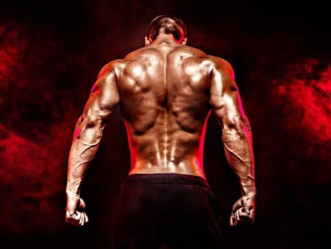 Back Training – The skinny on getting jacked